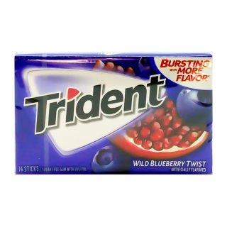 Trident - Wild Blueberry Twist - 14 Stück