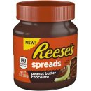 Reeses Spreads Peanut Butter Chocolate (368g)